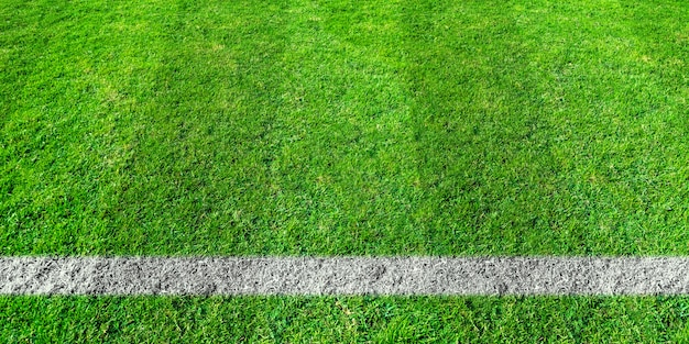 Soccer line in green grass of soccer field. green lawn field pattern for background. Premium Photo