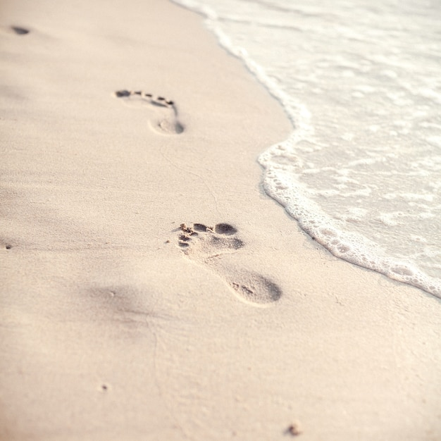 Soft focus and tone of footprints on the tropical beach . Premium Photo