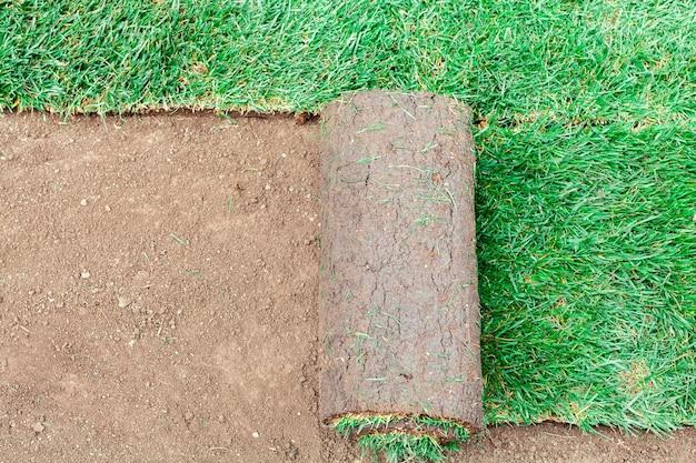 Покрытие почвы зелеными валками газона Premium Фотографии