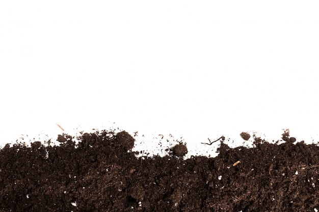 Soil or dirt section isolated on white surface Premium Photo
