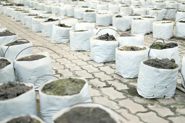 Почва и удобрения в посадочном мешке для выращивания рассады саженцев на ферме Premium Фотографии