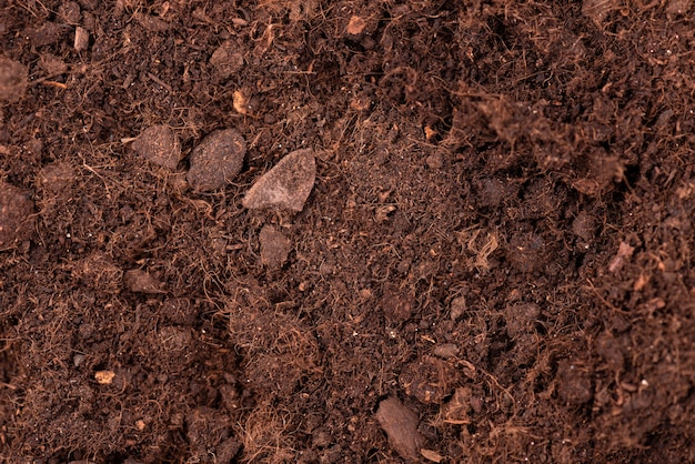 Soil texture background. top view. fertile soil for growing plants and flowers. Premium Photo