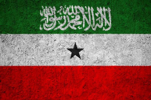 Somaliland flag painted on grunge wall Premium Photo