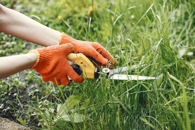庭のはさみで茂みをトリミングしている人 無料写真