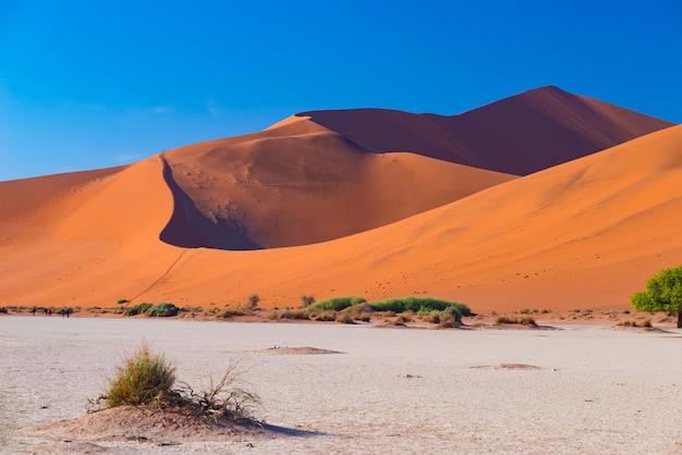 Sossusvlei namibia, travel destination in africa. sand dunes and clay salt pan. Premium Photo