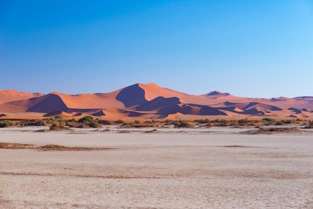 Sossusvlei намибия, путешествие в африку. песчаные дюны и глиняная солонка. Premium Фотографии