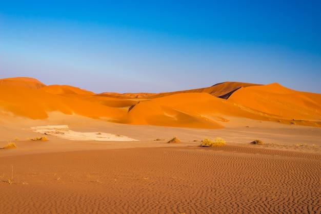 Sossusvlei песчаные дюны, национальный парк намиб науклуфт, пустыня намиб, живописные места назначения путешествия в намибии, африка. Premium Фотографии