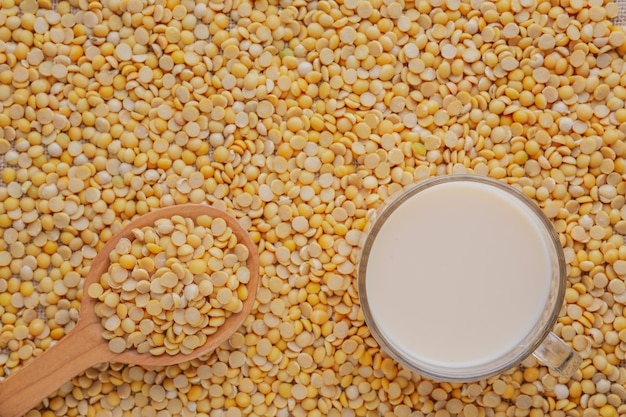 Soy milk that is placed on raw soybean seeds. Free Photo