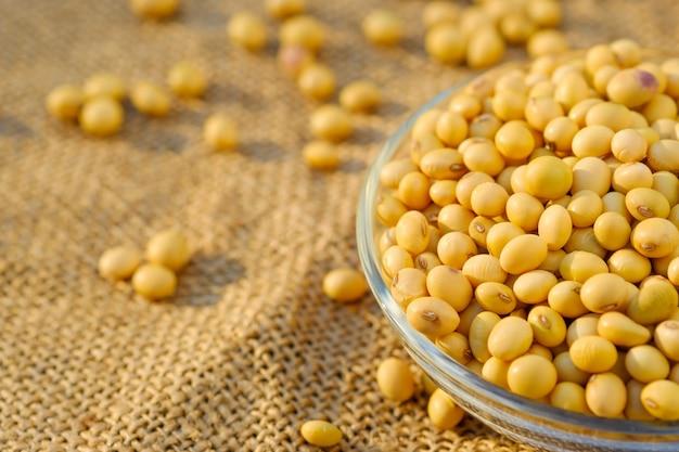 コピースペースでボウルに大豆。クローズアップsoybean.beansプレートで乾燥 Premium写真