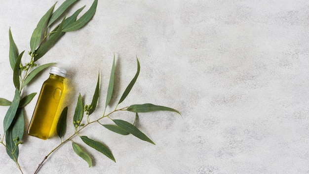 Spa composition for healthy lifestyle olive oil Premium Photo