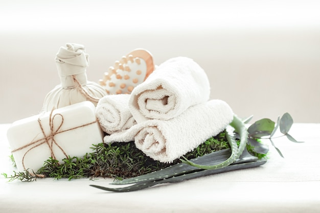 Spa composition with aloe vera on a light background with a twisted white towel. Free Photo