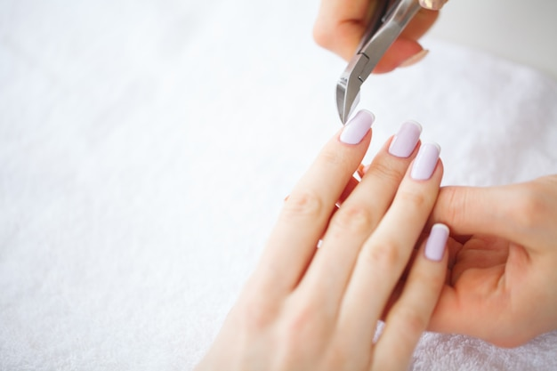 Spa manicure. french manicure at spa salon. woman hands in a nail salon receiving a manicure procedure. manicure procedure. Premium Photo