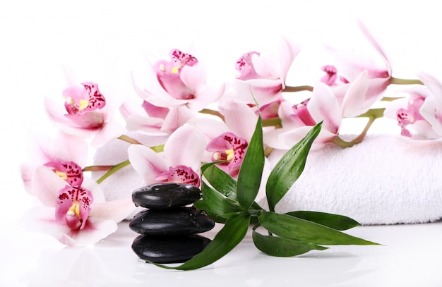 Spa stones and beautiful orchid Free Photo