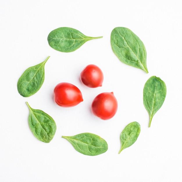 Spinach around cherry tomatoes Free Photo