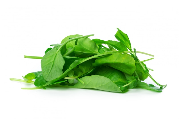 Spinach isolated on white background Premium Photo