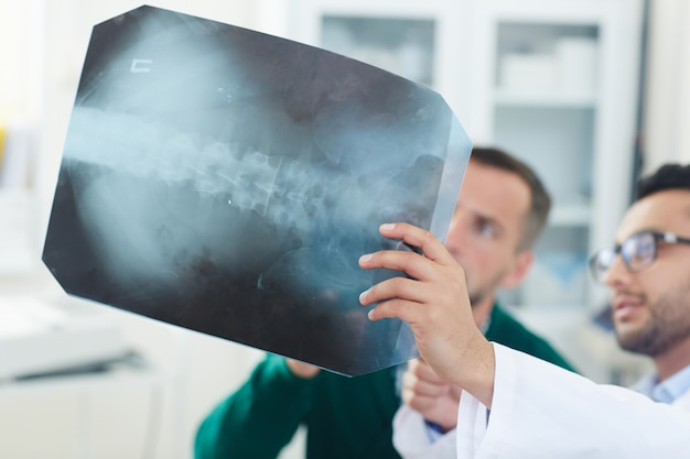Spinal x ray Free Photo