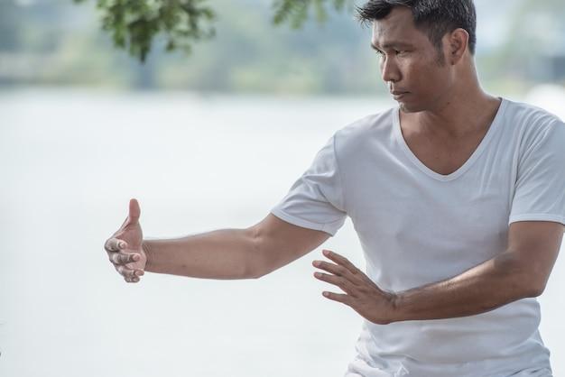 Spiritual of man hands doing tai chi or tai ji, traditional chinese martial arts. Premium Photo