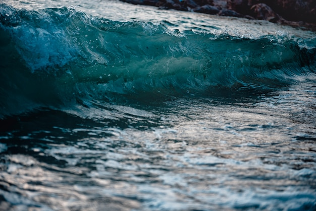 Splashes of wave Premium Photo