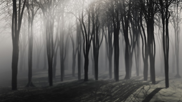 Spooky background of trees on a foggy night Free Photo