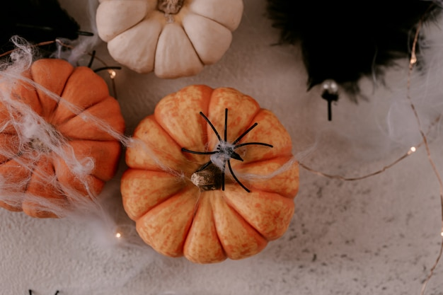 Spooky halloween decoration with different pumpkins, light, spiders. Premium Photo