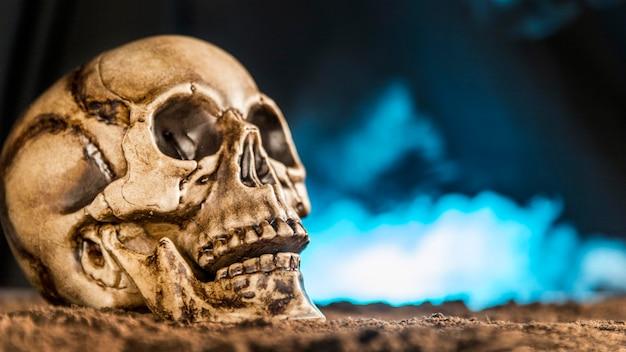 Spooky human skull with smoke Free Photo