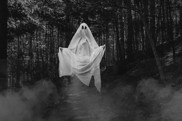 Spooky realistic halloween ghost in the forest Free Photo