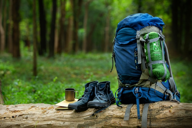 Sport shoes and backpack color blue on the timber in the forest Premium Photo