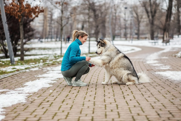 추운 날씨에 공원에서 그녀의 강아지와 함께 산책에 Sportswoman. 눈, 눈 오는 날, 추운 날씨, 애완 동물 프리미엄 사진