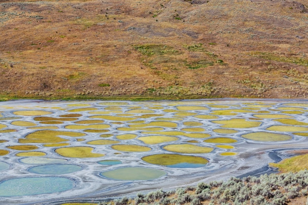 Пятнистое озеро в британской колумбии, канада Premium Фотографии
