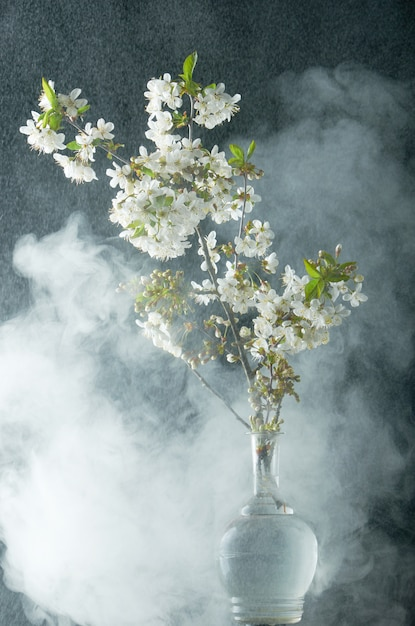 Sprig of cherry blossoms in smoke and water drops on black Premium Photo
