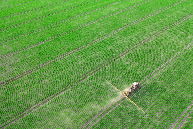 Spring agricultural work in the fields. the tractor sprays crops with herbicides, insecticides and pesticides. Premium Photo