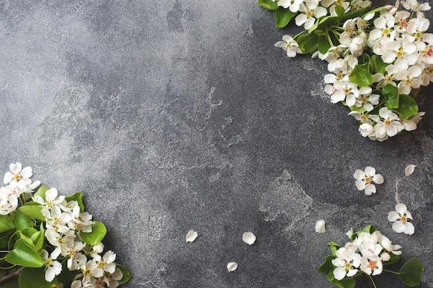 Spring flowering branch on grey concrete background Premium Photo