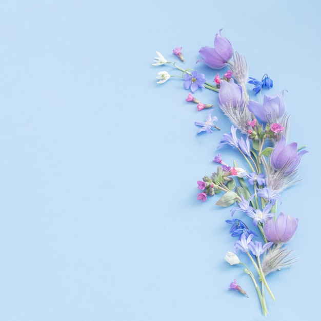 Spring flowers on blue background Premium Photo