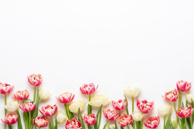 春の花。パステルカラーの背景にチューリップ。グリーティングカードレトロなビンテージスタイル。 Premium写真