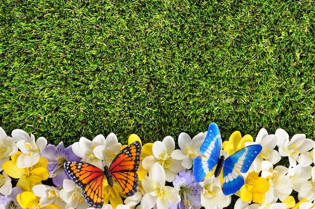 Весна граница фон с бабочками Бесплатные Фотографии