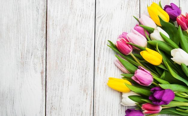 Spring tulip flowers Premium Photo
