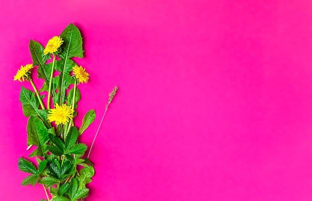 Fiori di campo primaverili su una superficie rosa Foto Gratuite