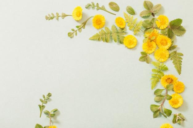 紙に春の黄色い花 Premium写真