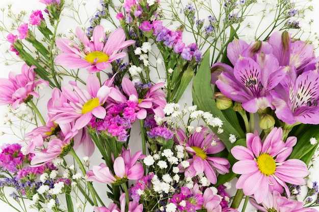 Springtime concept with beautiful flowers Free Photo