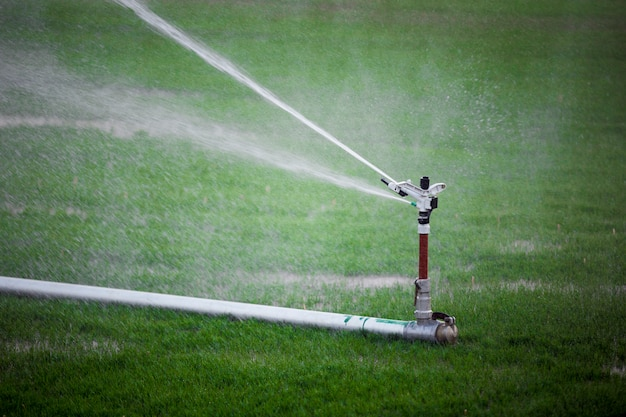 Sprinkler irrigating the field Free Photo