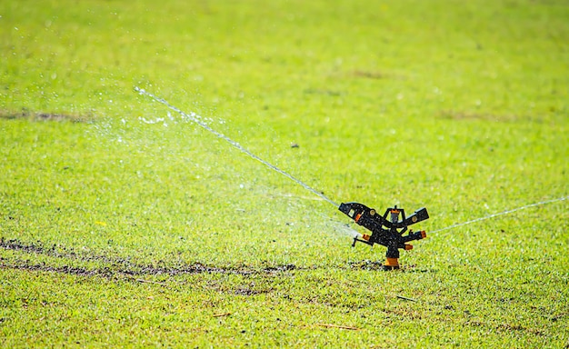 Sprinkler plastic are watered green lawn. Premium Photo