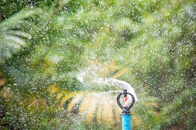 Sprinkler plastic are watered tree background blurred leaves. Premium Photo