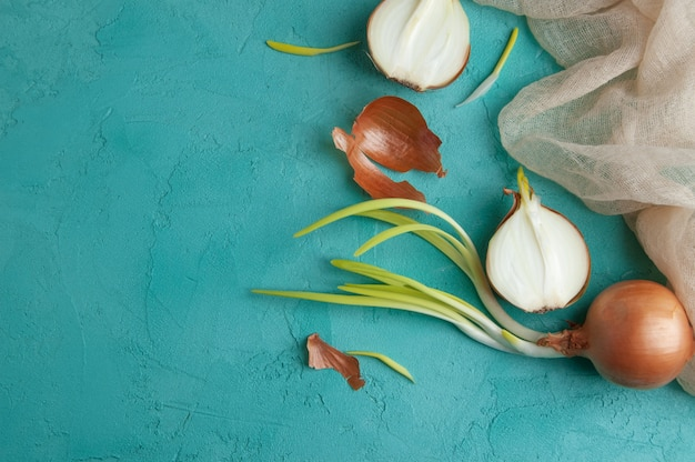 Sprouted onions on turquoise background. Premium Photo