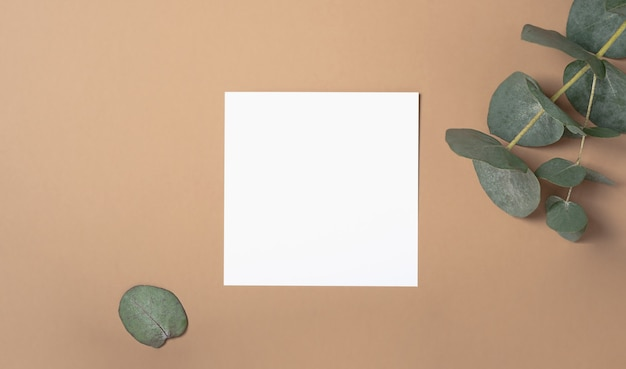 유칼립투스 분기와 사각형 초대 카드 모형. 복사 공간, 파스텔 베이지 색 배경으로 상위 뷰. 브랜딩 및 광고를위한 템플릿입니다. 프리미엄 사진