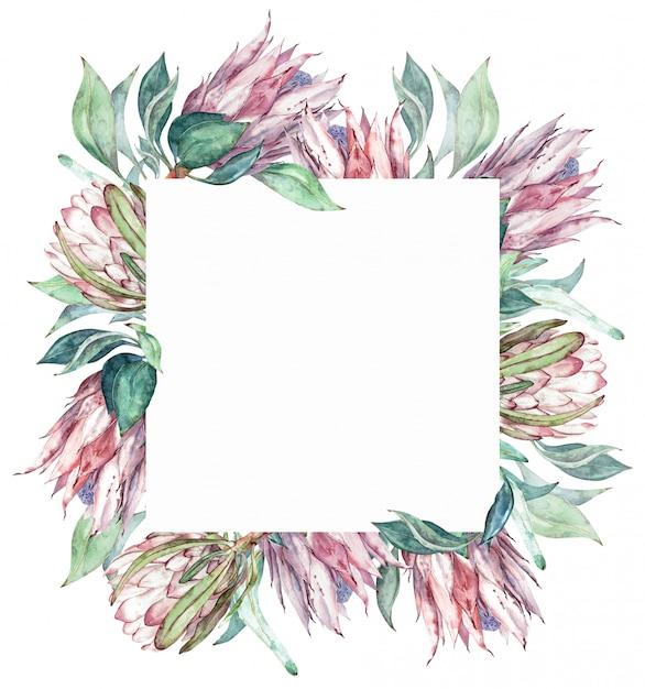 Square pink protea frame. watercolor exotic floral illustration. Premium Photo