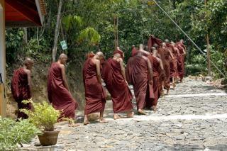 Sri lanka monks Free Photo