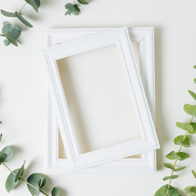 Stacked of white border frames with green leaves twig on white backdrop Free Photo