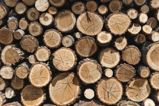 Stacks of timber Free Photo