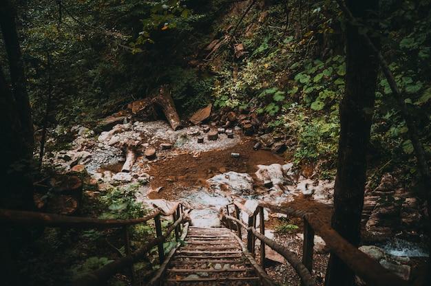 Stairs to the waterfall Premium Photo