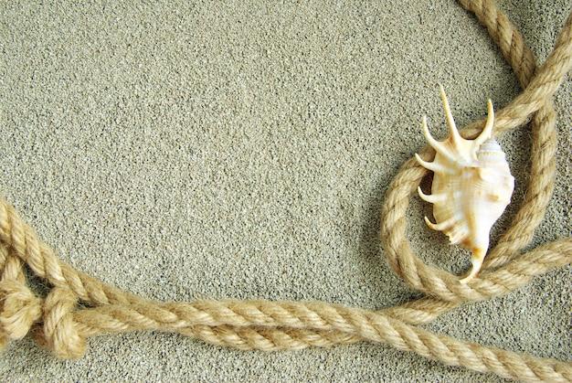 ヒトデと砂の上のロープの殻 Premium写真